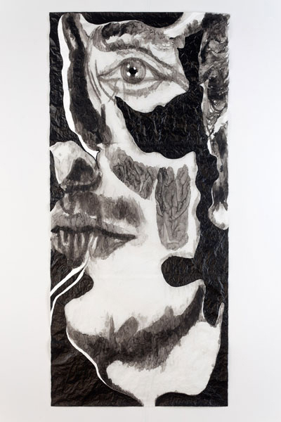 Cara Assombrada II/ Haunted Face II, 2012